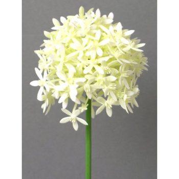 Kunstblume-Allium-64cm.-Farbe-weiß-WEISS-CREME-0
