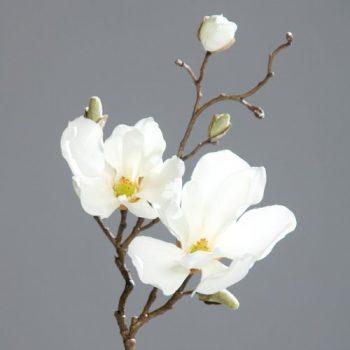 Magnolienzweig-Zweig-Magnolie-Kunstblume-creme-50-cm-0
