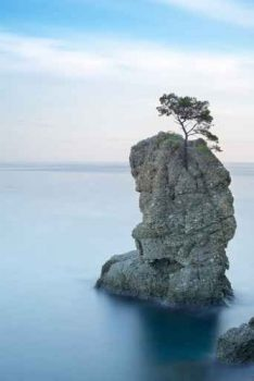 Luxus-Leinwandbild-Lonesome-Tree-Baum-6090-cm-Galeriequalitt-Einzelanfertigung-0