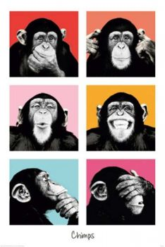 Empire-409256-The-Chimp-Pop-Poster-61-x-915-cm-0