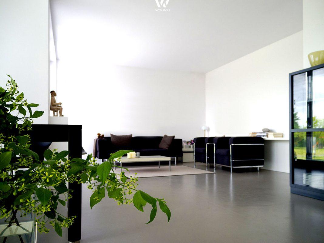 wohnzimmer pflanzen gro raum und m beldesign inspiration. Black Bedroom Furniture Sets. Home Design Ideas