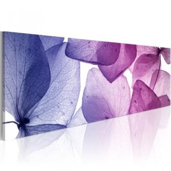 Bilder-135x45-cm-XXL-Bilder-135x45-cm-XXL-Format-Fertig-Aufgespannt-Top-Leinwand--1-Teilig--Wand-Bilder-9060132--135x45-cm--Riesen-Bilder-Kunstruck-Wand-Bilder--0