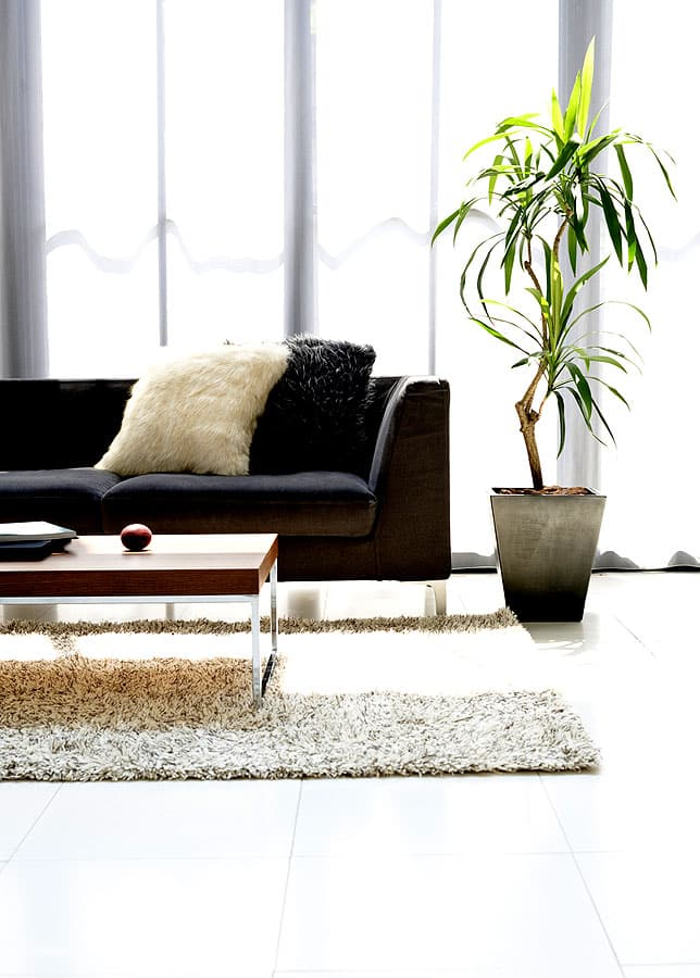 pflanzen geben dem wohnzimmer eine gute luft und wirken frisch wenn man sie pflegt wohnidee. Black Bedroom Furniture Sets. Home Design Ideas