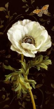 Acrylglasbild-Jardin-Paris-Florals-I-von-Danhui-Nai-110-x-220cm-Motiv-bis-an-die-Kanten-Kunstdruck-Poster-Malerei-Mohnbluete-weisse-Bluete-Blume-Schmetterling-florales-Muster-Tapetenm-hochwertige-Fert-0
