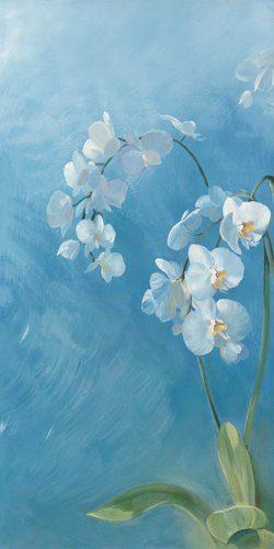 Acrylglasbild-Phalaenopsis-Fontaine-I-von-Sylvie-Vernageau-110-x-220cm-Motiv-bis-an-die-Kanten-Kunstdruck-Poster-hochwertige-Fertigung-Art-Galerie-Shop-0