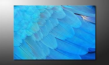 WandbilderXXL-Gedrucktes-Leinwandbild-Bird-Feathers-120x80cm-in-6-verschiedenen-Gren-Fertig-gespannt-auf-Holzkeilrahmen-Gnstige-Leinwanddrucke-fr-Kinderzimmer-Schlafzimmer-0