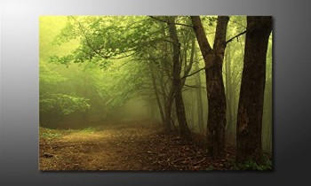 WandbilderXXL-Gedrucktes-Leinwandbild-Green-Forest-120x80cm-in-6-verschiedenen-Gren-Fertig-gespannt-auf-Holzkeilrahmen-Gnstige-Leinwanddrucke-fr-Kinderzimmer-Schlafzimmer-0