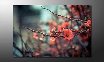 WandbilderXXL-Gedrucktes-Leinwandbild-Red-Blossoms-120x80cm-in-6-verschiedenen-Gren-Fertig-gespannt-auf-Holzkeilrahmen-Gnstige-Leinwanddrucke-fr-Kinderzimmer-Schlafzimmer-0