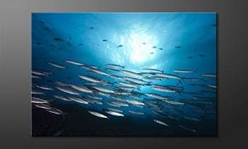 WandbilderXXL-Gedrucktes-Leinwandbild-Shoal-120x80cm-in-6-verschiedenen-Gren-Fertig-gespannt-auf-Holzkeilrahmen-Gnstige-Leinwanddrucke-fr-Kinderzimmer-Schlafzimmer-0