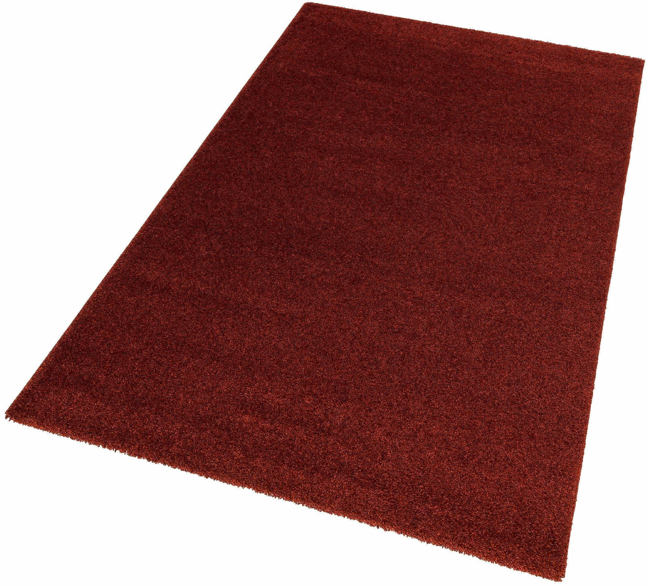 hochflor teppich riva astra rechteckig h he 25 mm rot online kaufen bei woonio. Black Bedroom Furniture Sets. Home Design Ideas