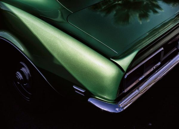 Green Camaro Leinwandbild