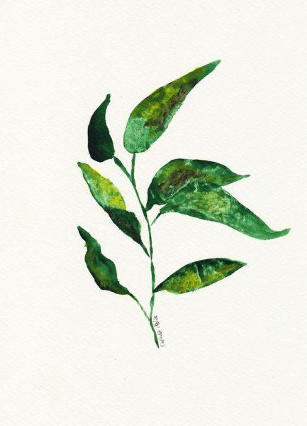 Growing Plant Leinwandbild