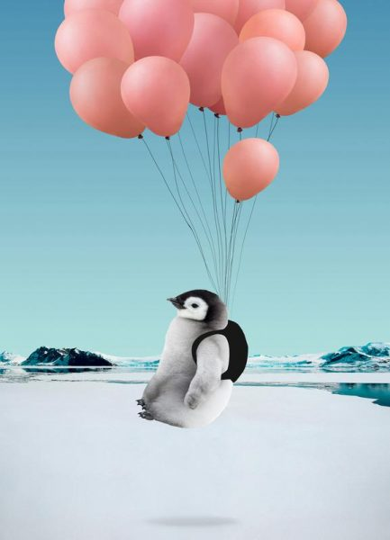 Penguin Leinwandbild