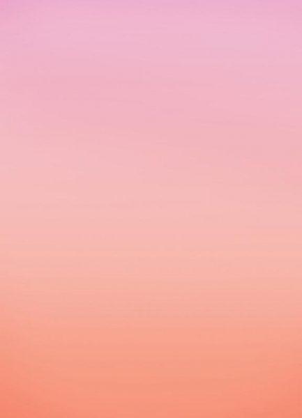 Warm Blush Leinwandbild