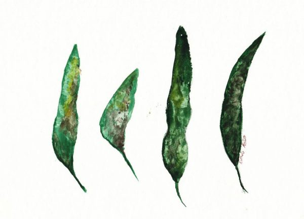 All My Leaves Leinwandbild