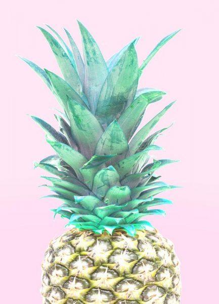 Ananas Leinwandbild