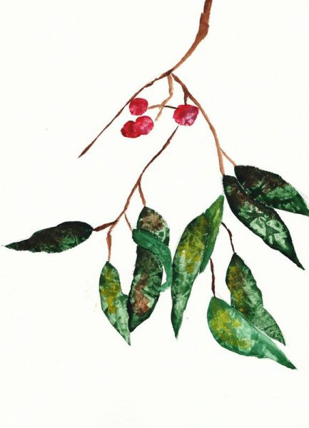 Autumn Berry 2 Leinwandbild