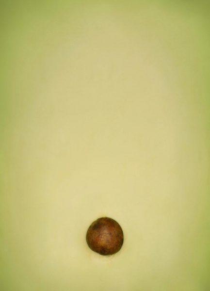 Avocado Leinwandbild