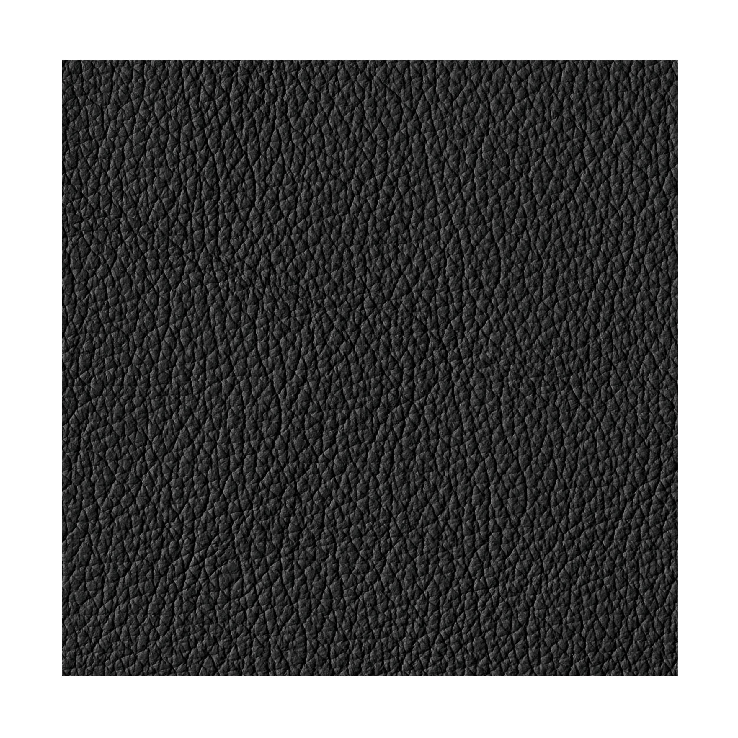 bed for living daybed leder schwarz online kaufen bei woonio. Black Bedroom Furniture Sets. Home Design Ideas