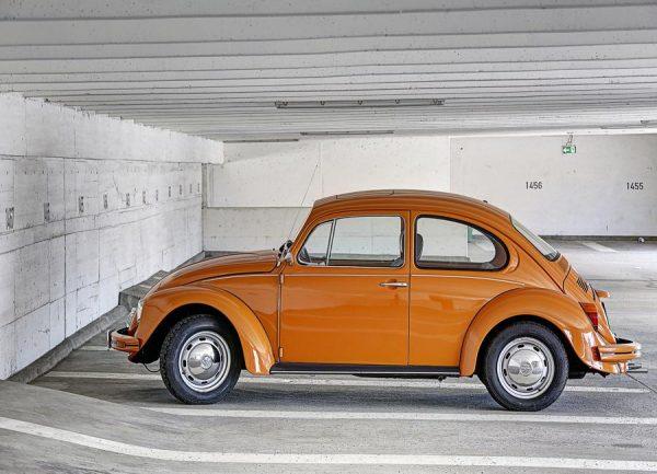 Beetle Leinwandbild