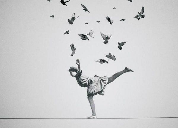 Birds Of A Feather Leinwandbild