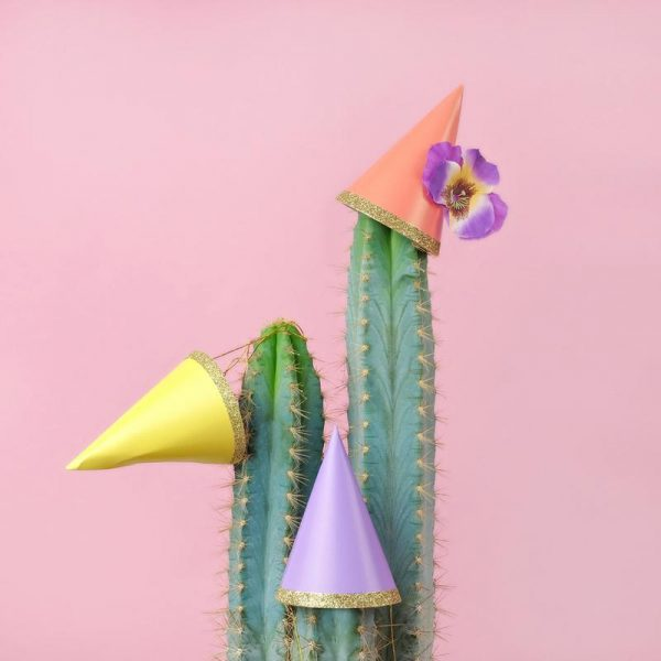 Cactus Party Hats Leinwandbild