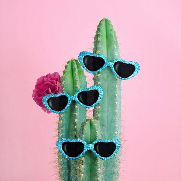 Cactus Sunglasses Leinwandbild