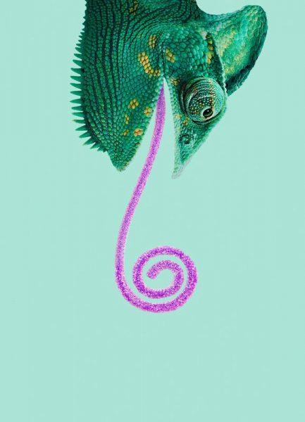 Candy Chameleon Leinwandbild
