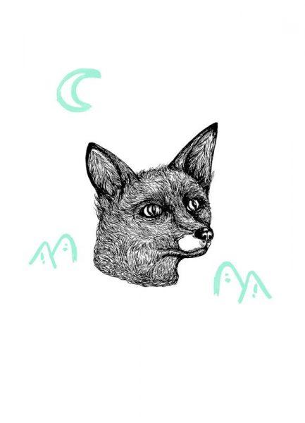 Celestial Fox Leinwandbild