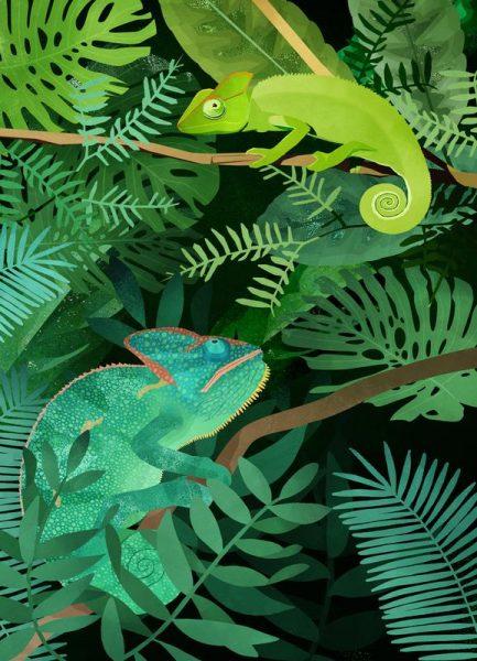 Chameleons Leinwandbild