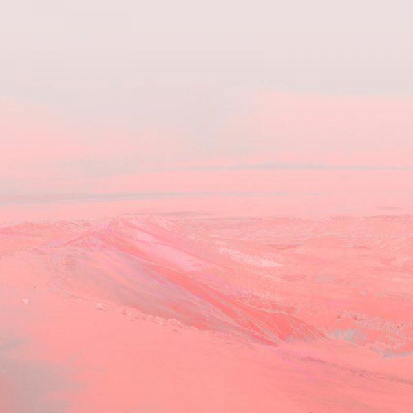 Chemin Rose Leinwandbild