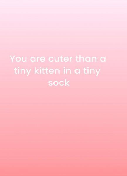 Cuter Than Kittens Leinwandbild