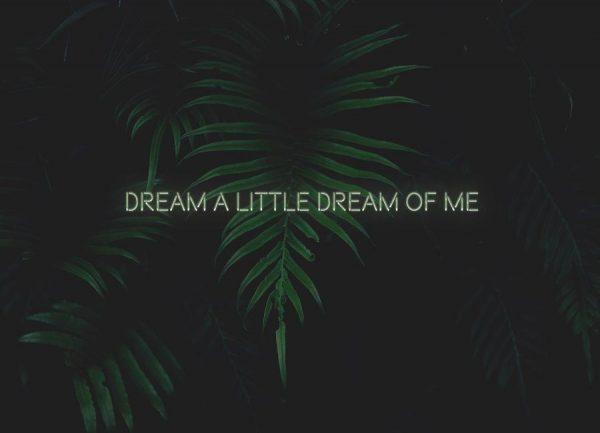 Dream a little dream Leinwandbild