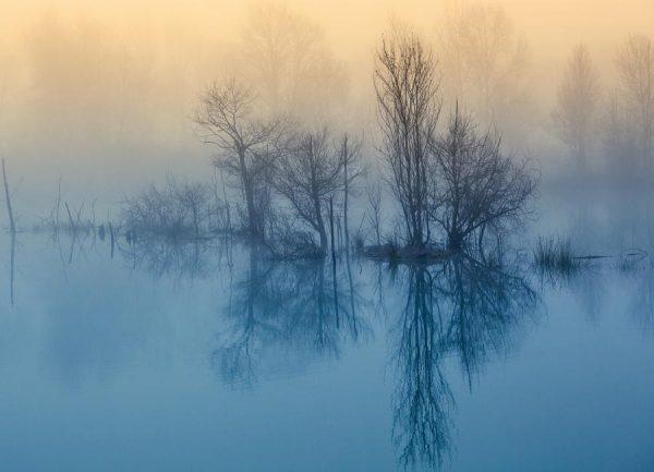 Enchanted Serenity Meizner Leinwandbild