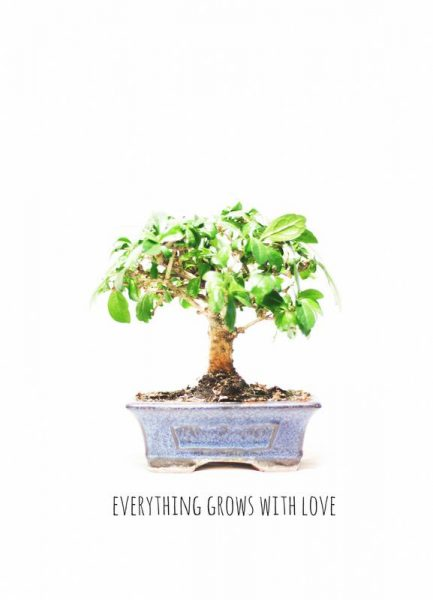 Everything Grows with Love Leinwandbild