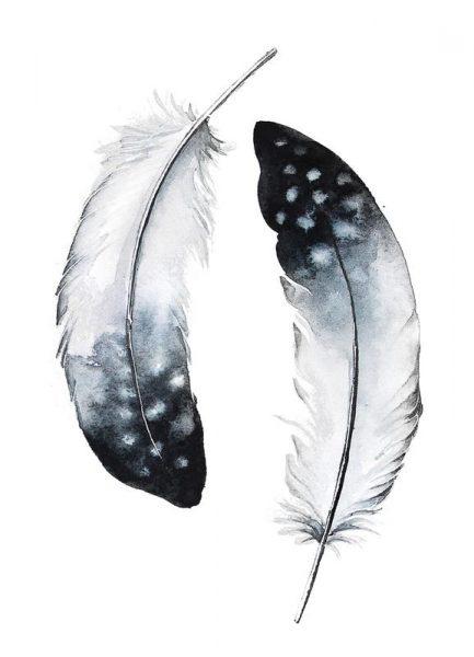 Feathers I Leinwandbild