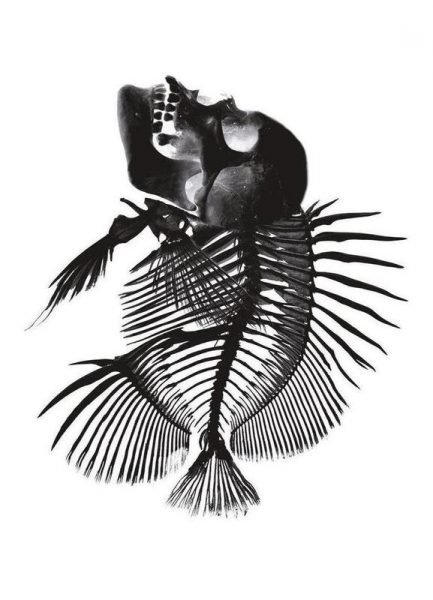 Fishskull Leinwandbild