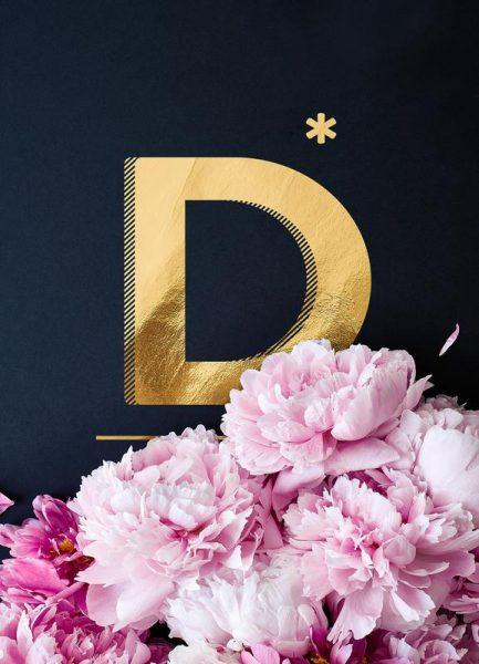 Flower Alphabet D Leinwandbild