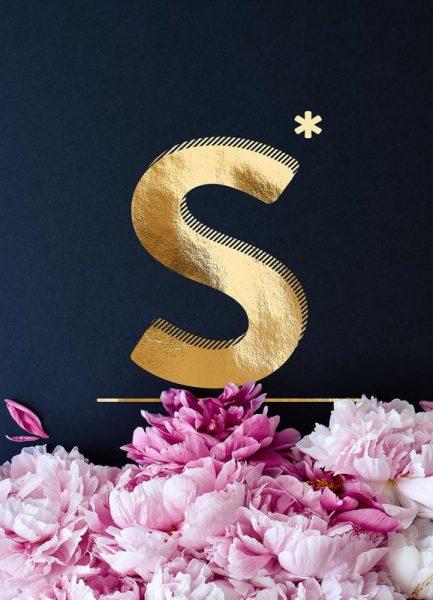 Flower Alphabet S Leinwandbild