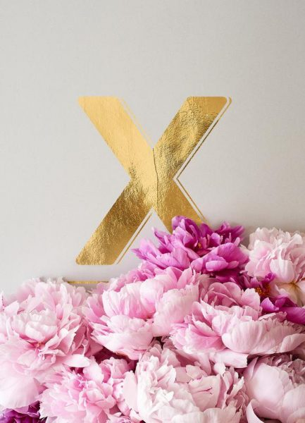Flower Alphabet X Leinwandbild