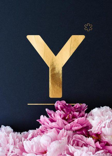 Flower Alphabet Y Leinwandbild