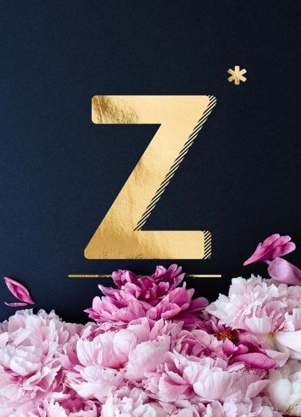 Flower Alphabet Z Leinwandbild