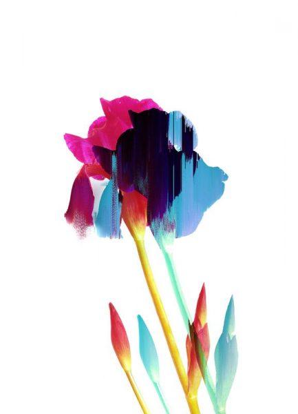 Glitched Iris Leinwandbild