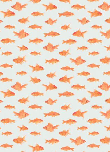Goldfish Leinwandbild