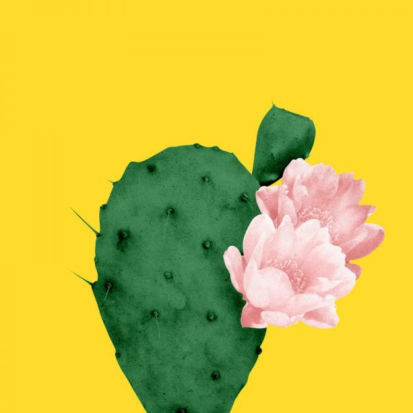 In Bloom Leinwandbild