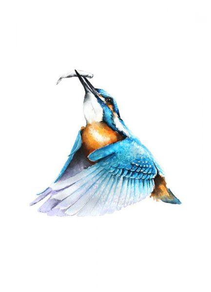Kingfisher Leinwandbild