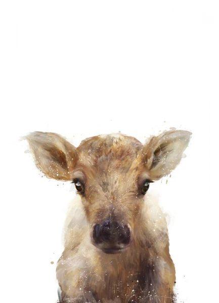 Little Reindeer Leinwandbild