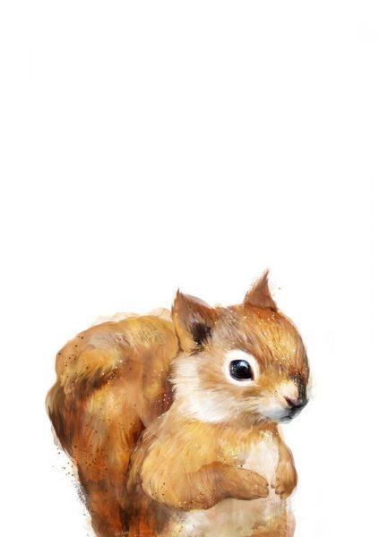Little Squirrel Leinwandbild