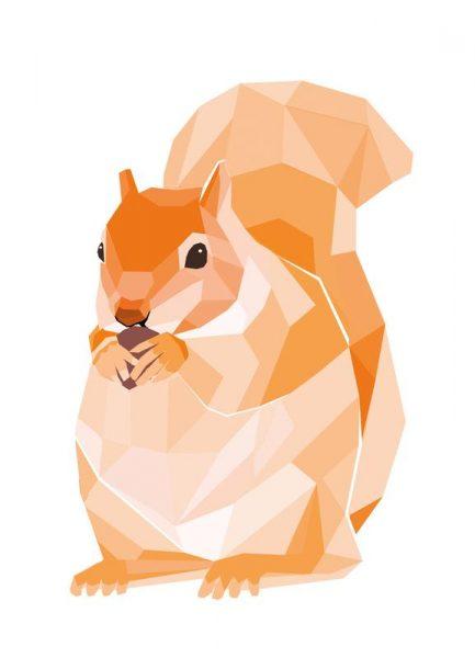 Mosa Eichhörnchen Leinwandbild