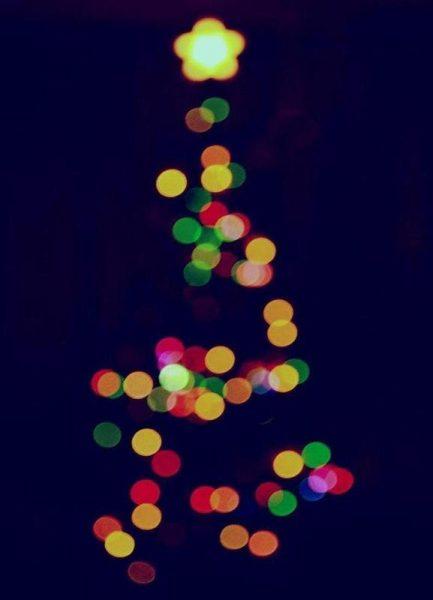 Oh Christmas Tree Leinwandbild